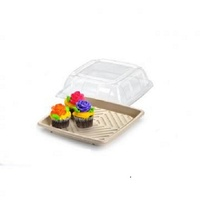 "10"" CLEAR PET SQUARE LID FOR PLATTER"
