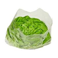 BAG PUNCHED PREMIUM 15X12IN LETTUCE