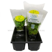 2 CHANNEL HYDROPONICS TUB 415X255X90