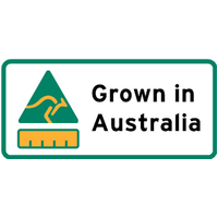 LABEL GROWN IN AUSTRALIA 33X17MM