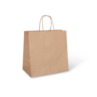 DP PAPER CARRY BAG (UBER) 300X300X175MM