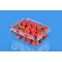 PRODUCE PUNNET 500G HINGED HIGH LID